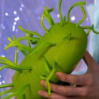mikoplazmoz-u-muzhchin-simptomy-diagnostika-lechenie