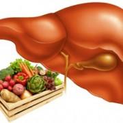 Болезни печени: симптомы, причины, лечение