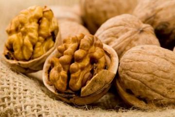 Польза от грецкого ореха